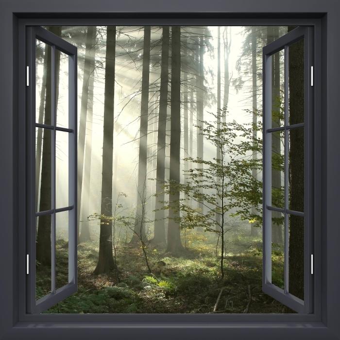 Fototapeta winylowa Okno czarne otwarte - Las iglasty w mglisty dzień jesieni - Widok przez okno