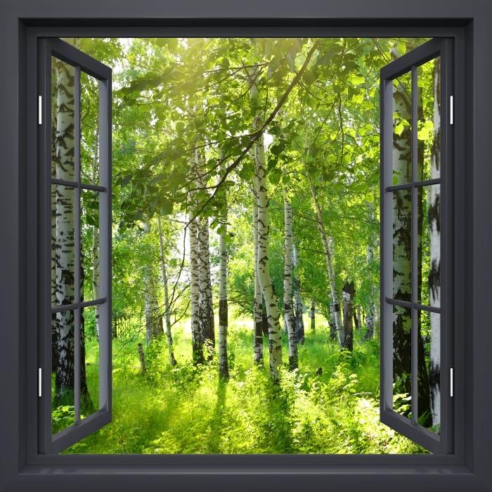 Vinyl Fotobehang Black raam open - Zomer. Berkenbossen. - Uitzicht door het raam