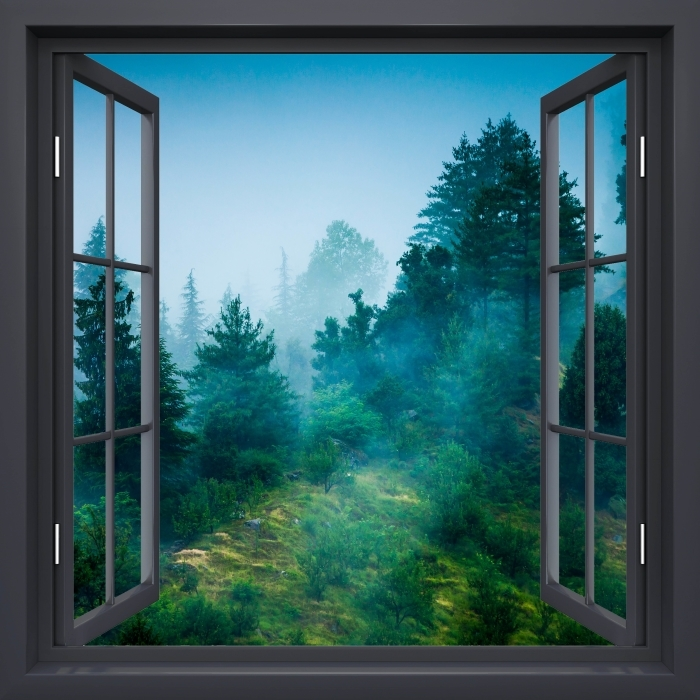 Black window open - Fog Vinyl Wall Mural - View through the window