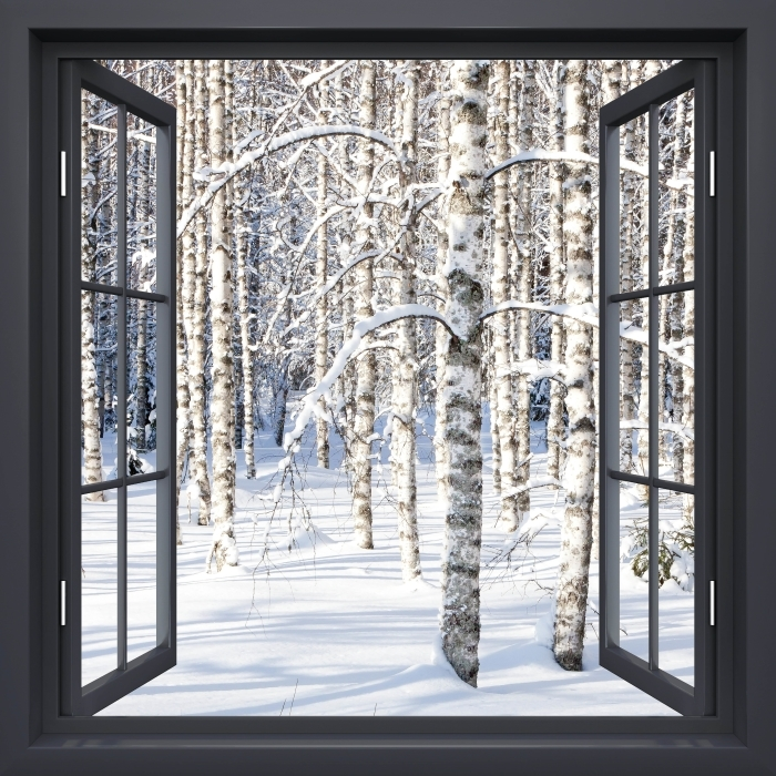 Fotomural Estándar Negro Ventana Abierta - Abedul Nieve - Vistas a través de la ventana