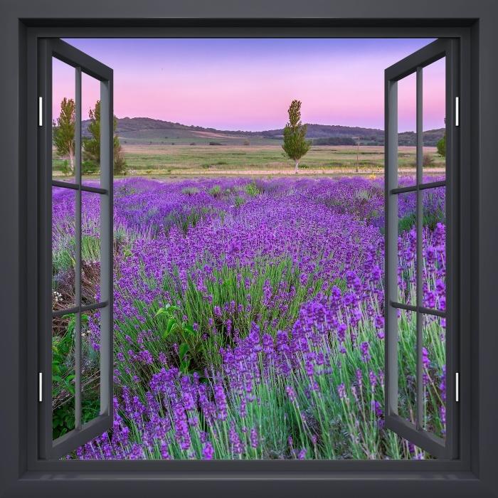 Papier peint vinyle Fenêtre Noire Ouverte - Coucher De Soleil. Hongrie. - La vue à travers la fenêtre