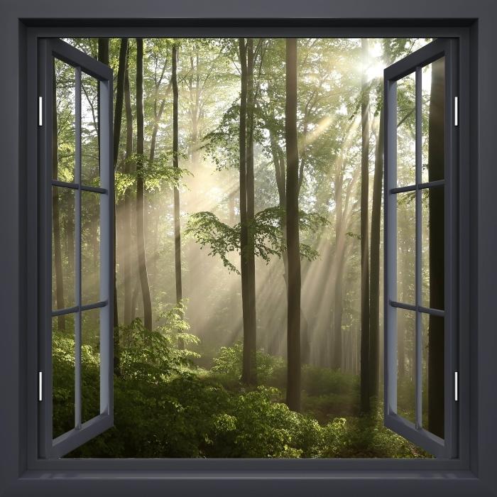 Fototapeta winylowa Okno czarne otwarte - Mglisty poranek w lesie - Widok przez okno
