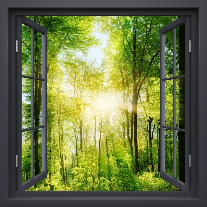 Black window open - Forest Vinyl Wall Mural - View through the window