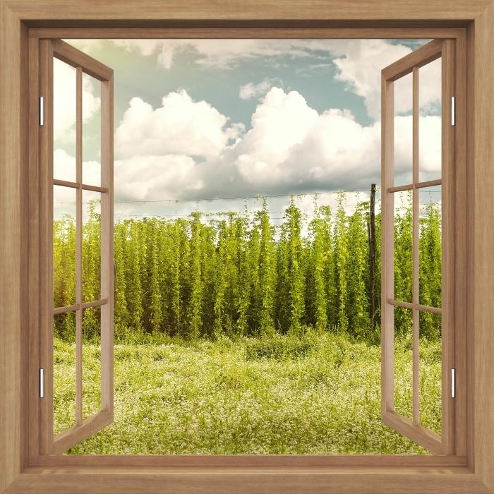 Fototapeta winylowa Okno brązowe otwarte - Plantacja - Imitacje