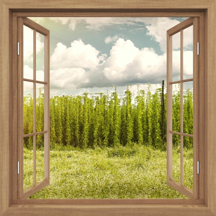 Brown opened the window - Plantation Vinyl Wall Mural - Imitations