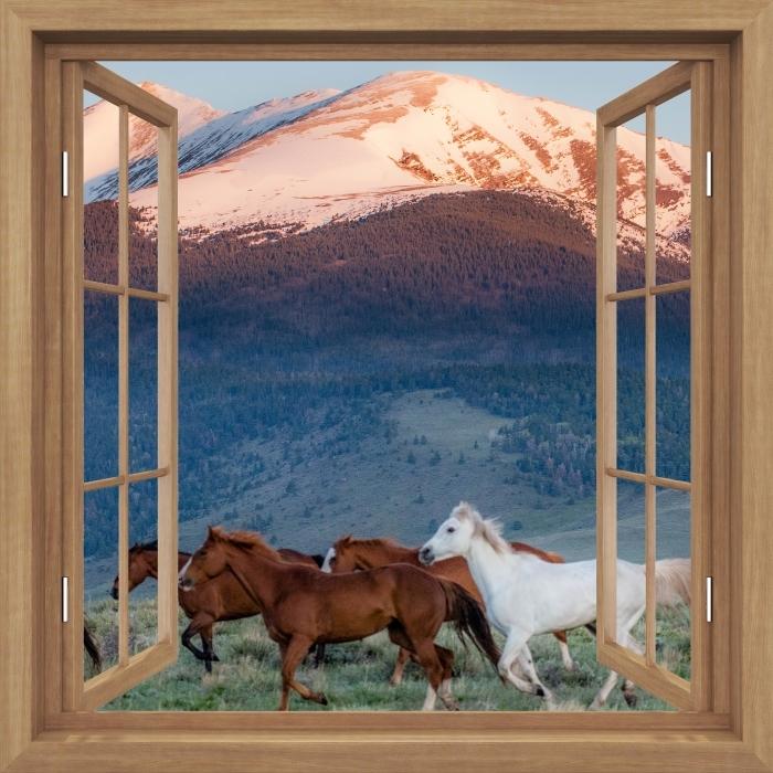 Fototapeta winylowa Okno brązowe otwarte - Konie - Widok przez okno