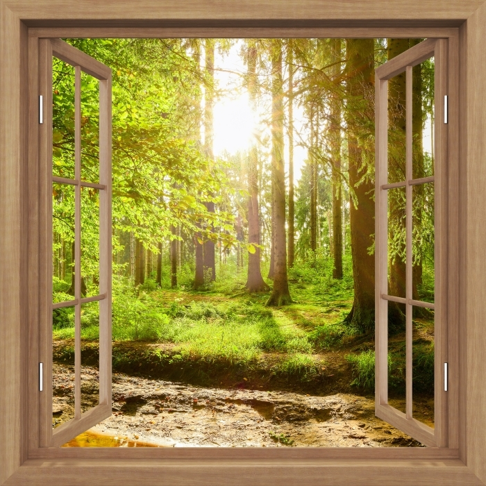 Fototapeta winylowa Okno brązowe otwarte - Las - Widok przez okno