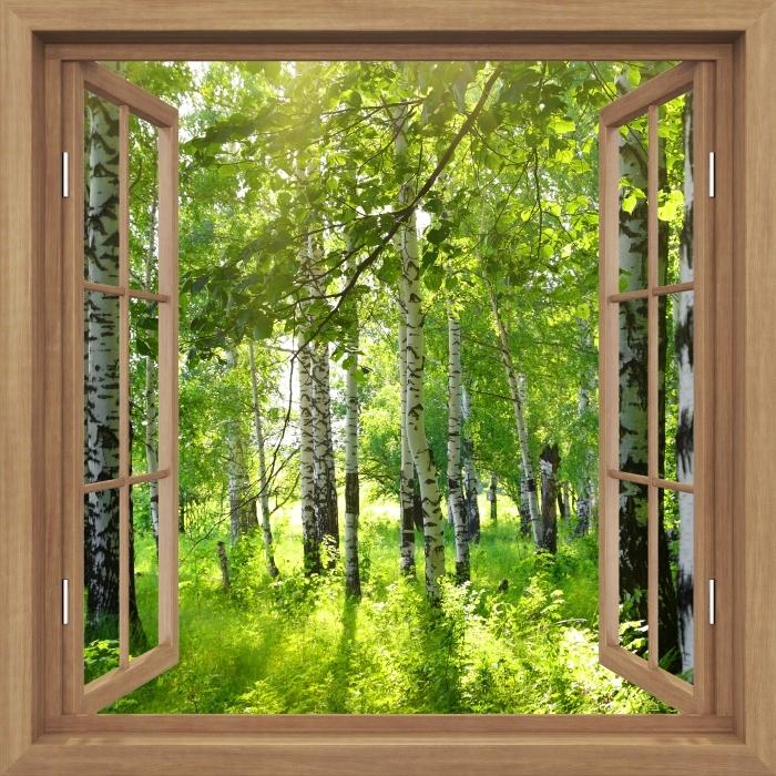 Fototapeta winylowa Okno brązowe otwarte - Lato. Brzozowe lasy. - Widok przez okno