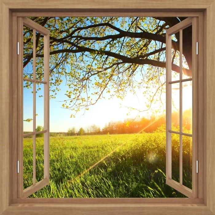 Fototapeta zmywalna Okno brązowe otwarte - Drzewo - Widok przez okno