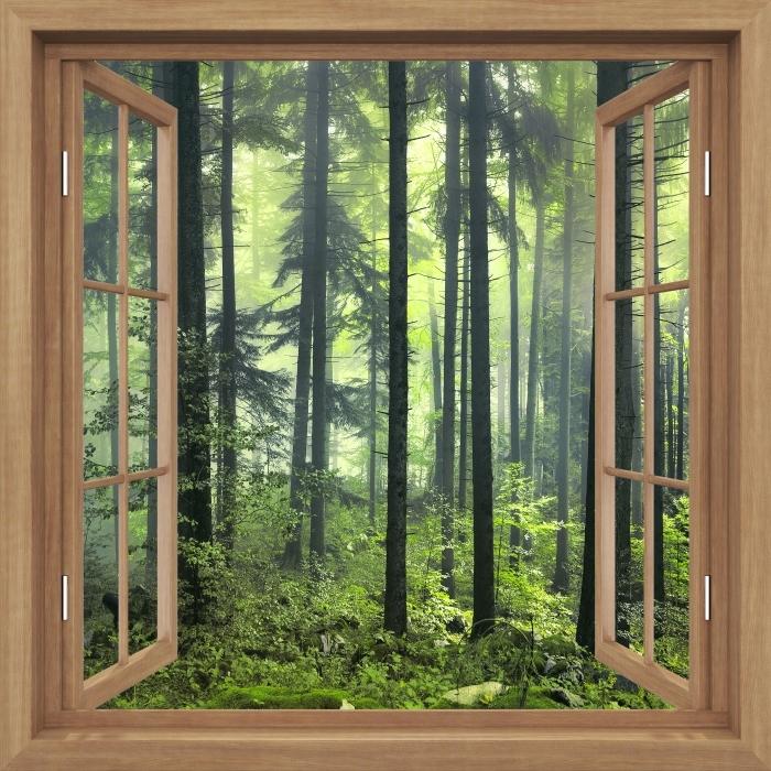Fototapeta winylowa Okno brązowe otwarte - Tajemniczy ciemny las - Widok przez okno