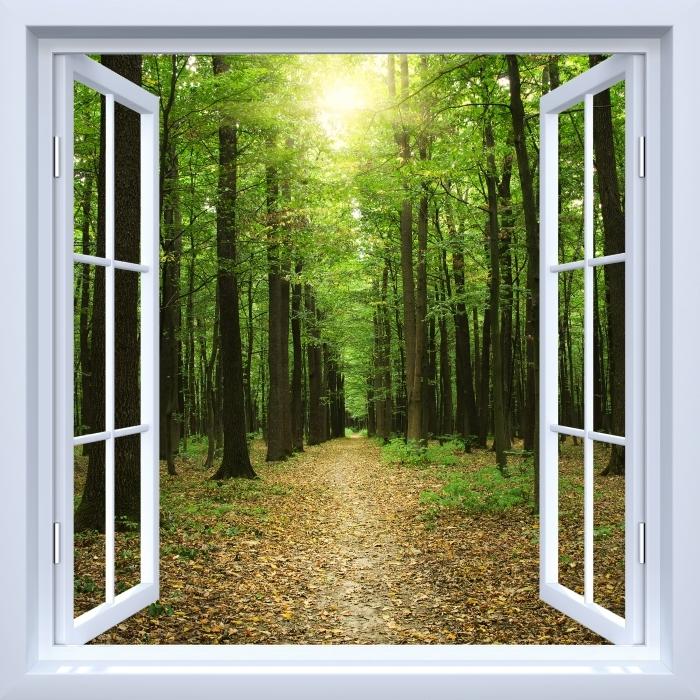 Papier peint vinyle Fenêtre ouverte blanche - Forêt au soleil - La vue à travers la fenêtre
