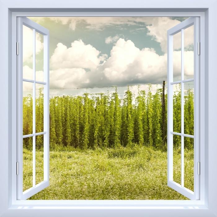 Vinyl Fotobehang White open raam - Plantation - Uitzicht door het raam