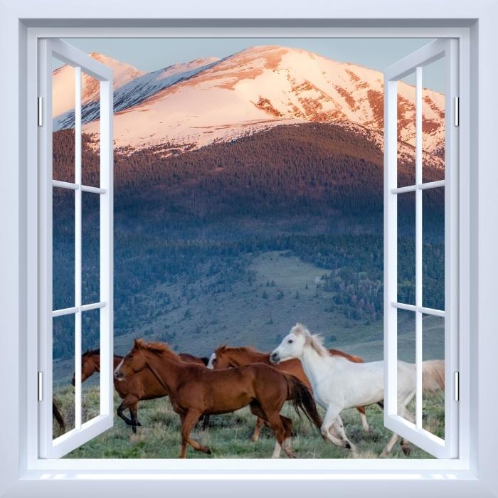 Papier peint vinyle Fenêtre ouverte blanche - Chevaux - La vue à travers la fenêtre