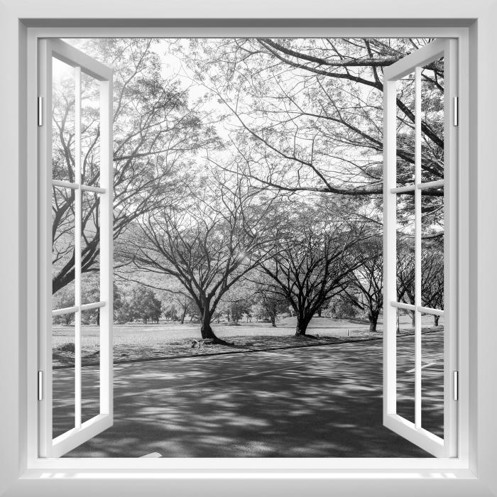 Fototapeta winylowa Okno białe otwarte - Aleja. - Widok przez okno
