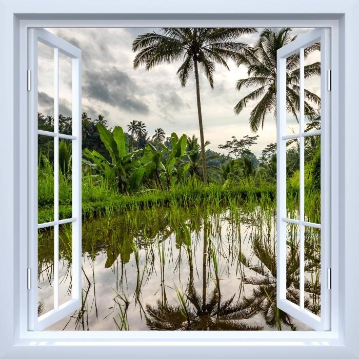 Fototapeta samoprzylepna Okno białe otwarte - Palmy. Indonezja. - Imitacje