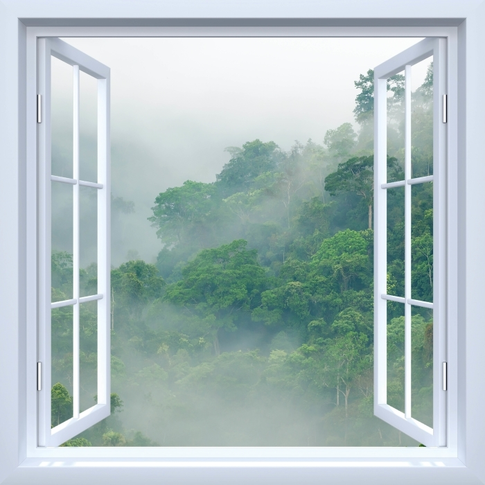White open window - Rainforests Vinyl Wall Mural - View through the window