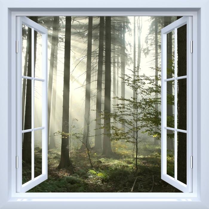 Papier peint vinyle Fenêtre ouverte blanche - forêt de conifères un jour d'automne brumeux - La vue à travers la fenêtre