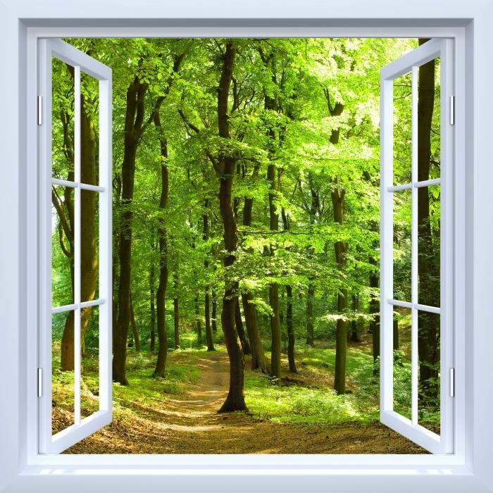 Fototapeta winylowa Okno białe otwarte - Las bukowy latem - Widok przez okno