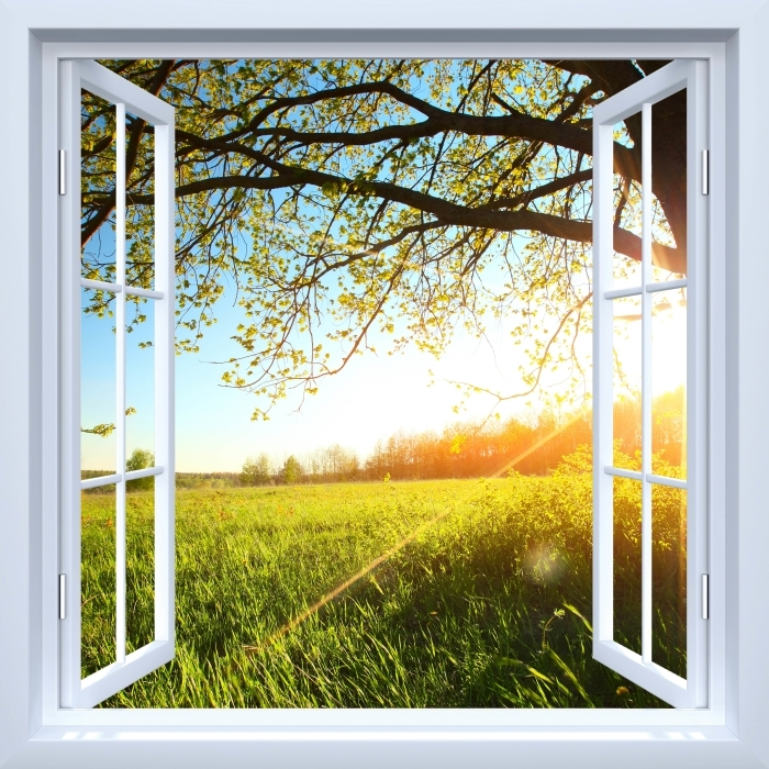 White open window - Tree Vinyl Wall Mural - View through the window