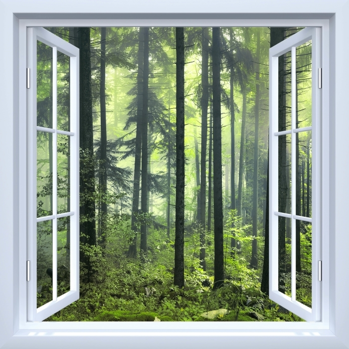 Papier peint vinyle Fenêtre ouverte blanche - mystérieuse forêt sombre - La vue à travers la fenêtre