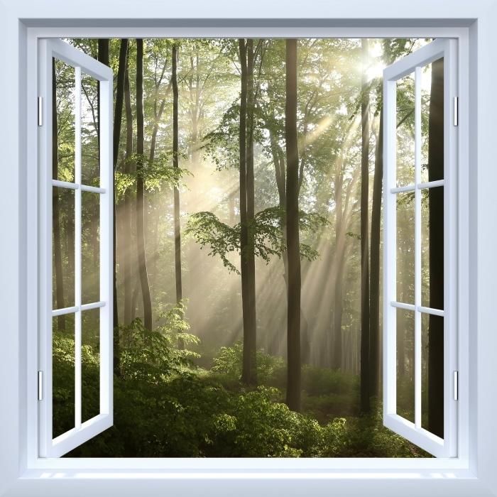 Fototapeta winylowa Okno białe otwarte - Mglisty poranek w lesie - Widok przez okno