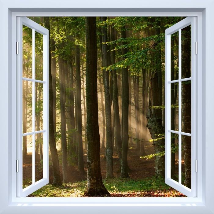 Fototapeta winylowa Okno białe otwarte - Jesień - Widok przez okno