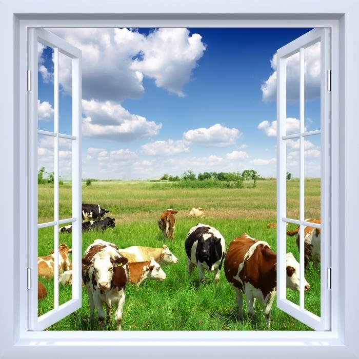 Fototapeta winylowa Okno białe otwarte - Łąka - Widok przez okno