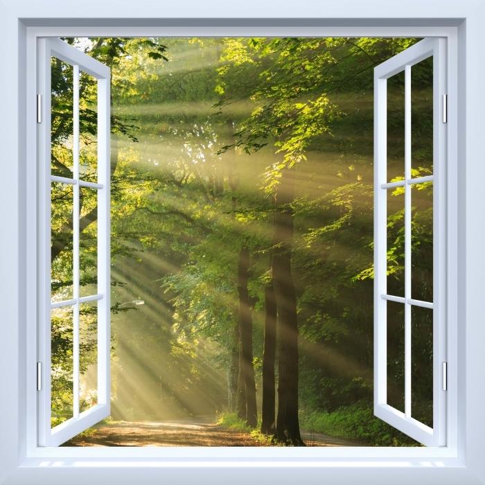 Vinyl-Fototapete Weiß offene Fenster - Sonnenstrahlen im Wald - Blick durch das Fenster