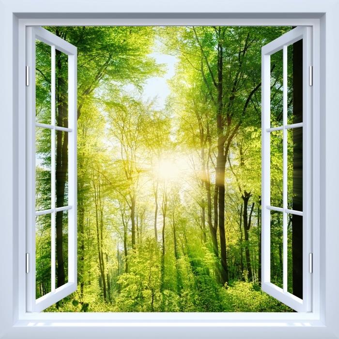 Fototapeta samoprzylepna Okno białe otwarte - Las - Widok przez okno