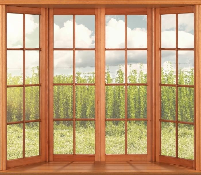 Vinyl-Fototapete Terrasse - Plantation - Blick durch das Fenster