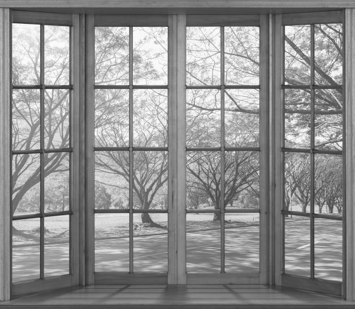 Fototapeta winylowa Taras - Aleja. - Widok przez okno