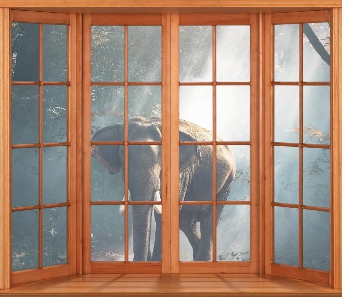 Papier peint vinyle Terrasse - éléphant dans la forêt - La vue à travers la fenêtre