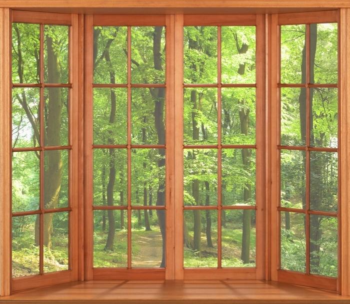 Fototapeta winylowa Taras - Las bukowy latem - Widok przez okno