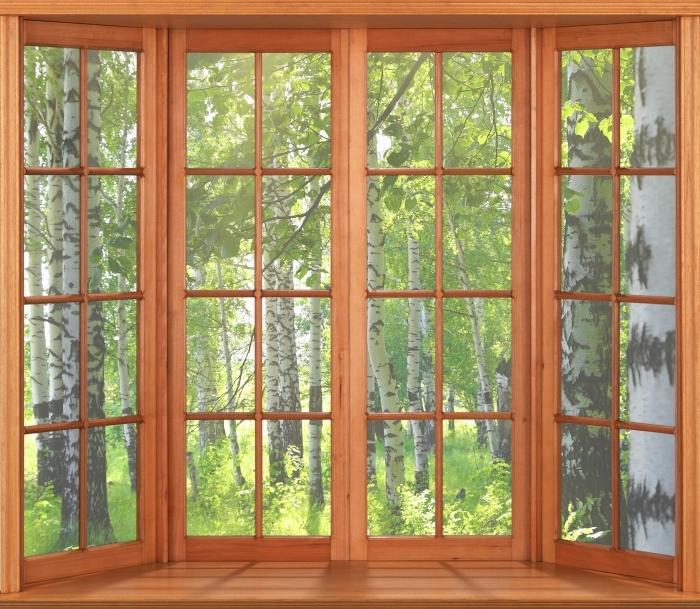 Papier peint vinyle Terrasse - été. les forêts de bouleaux. - La vue à travers la fenêtre