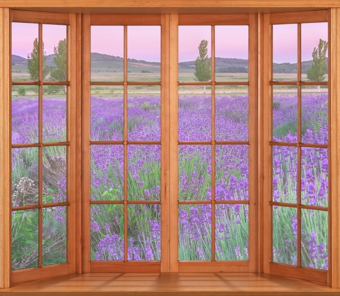 Papier peint vinyle Terrasse - Coucher de soleil. Hongrie. - La vue à travers la fenêtre
