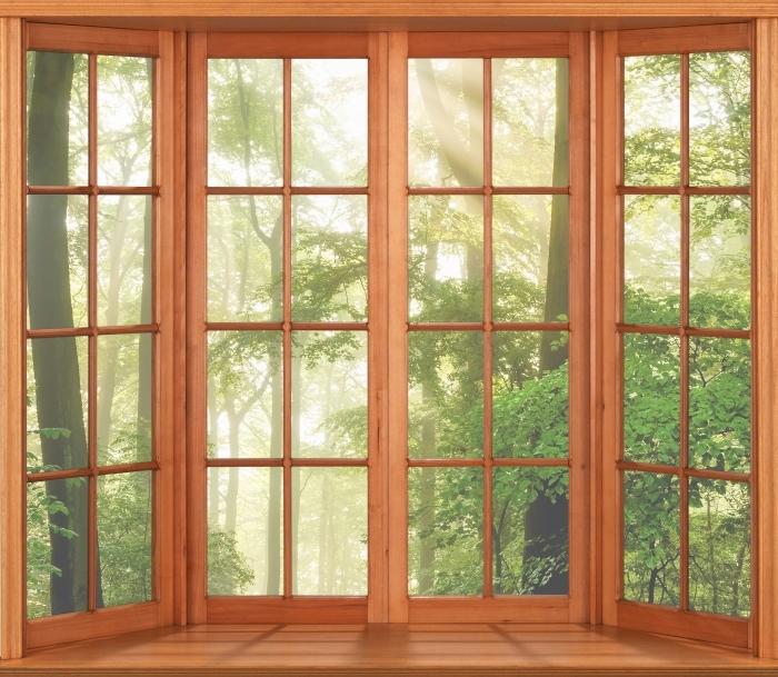 Papier peint vinyle Terrasse - Forêt - La vue à travers la fenêtre