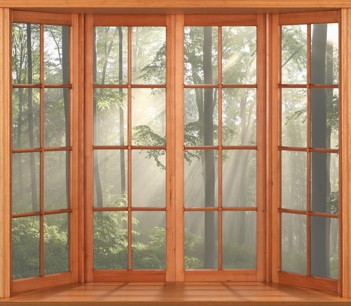 Fototapeta winylowa Taras - Mglisty poranek w lesie - Widok przez okno