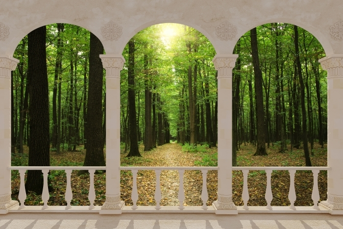 Papier peint vinyle Terrasse - Forêt au soleil -