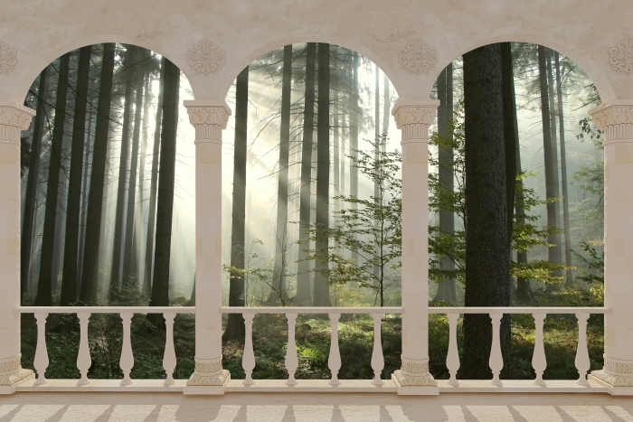 Papier peint vinyle Terrasse - forêt de conifères un jour d'automne brumeux -