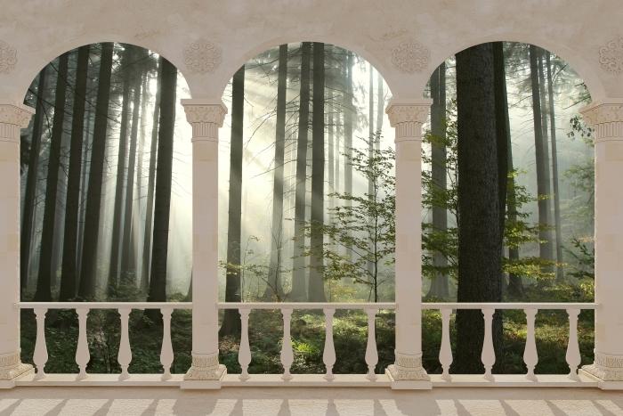 Terrace - coniferous forest on a misty autumn day Vinyl Wall Mural - Terraces