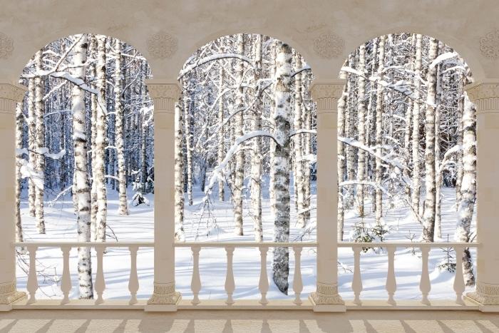 Papier peint vinyle Terrasse - bouleau de neige -