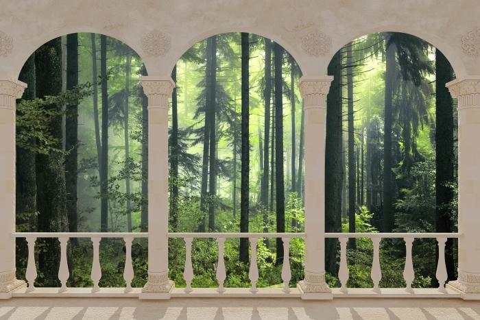 Papier peint vinyle Terrasse - mystérieuse forêt sombre -