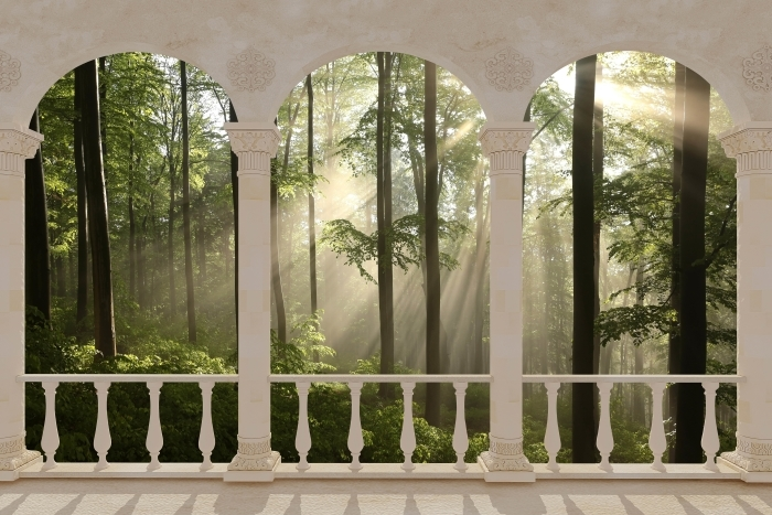 Fotomural Estándar Terraza - Mañana de niebla en el bosque -