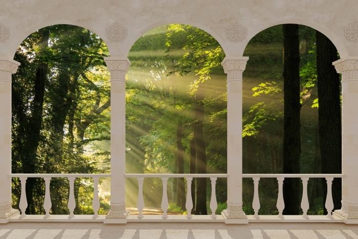 Fototapeta winylowa Taras - Promienie słońca w lesie - Tarasy