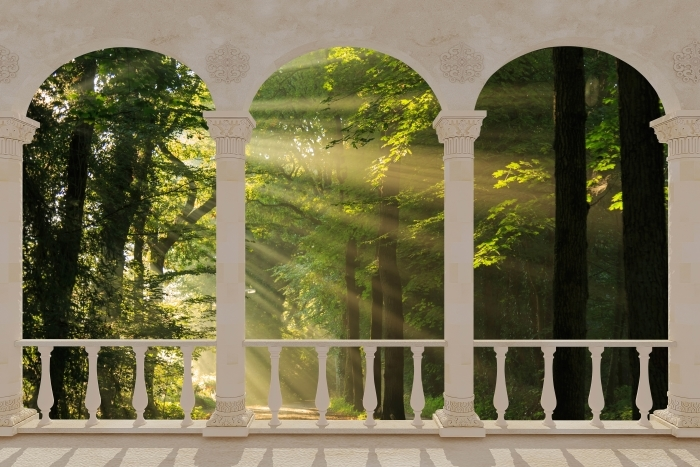 Papier peint vinyle Terrasse - Rayons de soleil dans la forêt -
