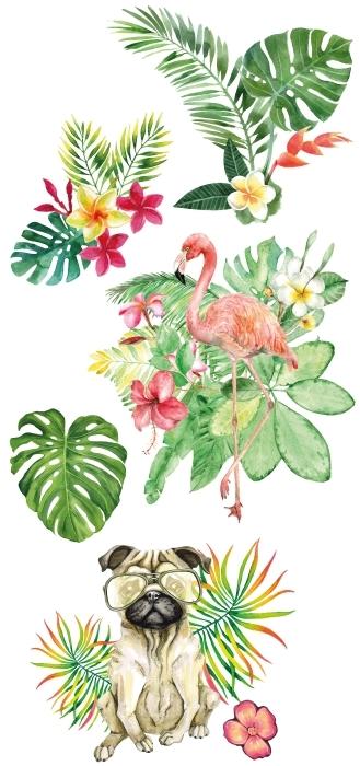 El verde de la naturaleza Set de vinilos - SETS DE VINILOS