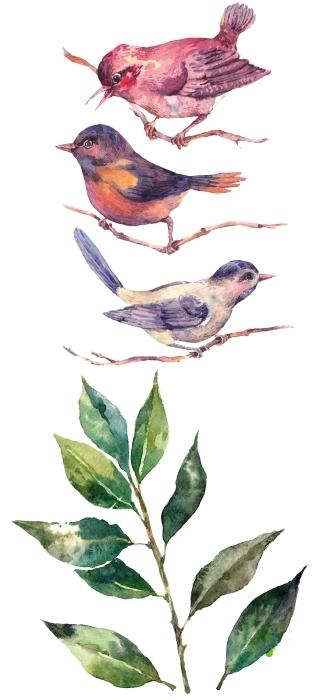 Folhas e pássaros Conjunto de autocolantes - CONJUNTOS DE AUTOCOLANTES