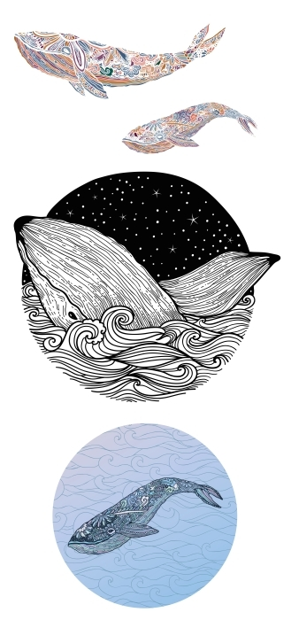 Morskie zwierzęta Zestaw naklejek - Zestawy naklejek
