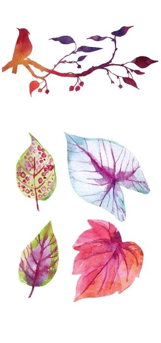 Liście malowane akwarelami Zestaw naklejek - Zestawy naklejek