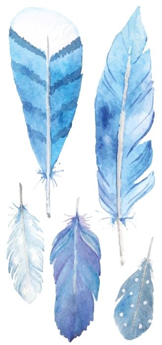piume blu Set di adesivi - SET DI ADESIVI